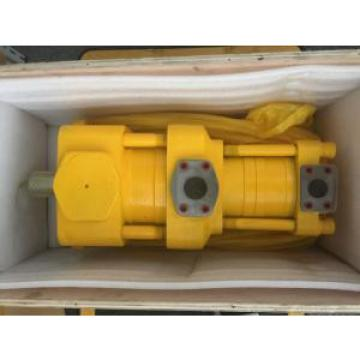 SUMITOMO QT5333 Series Double Gear Pump QT5333-40-12.5F