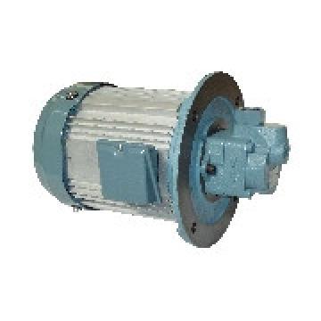 TOYOOKI HBPP Gear pump HBPP-KD4L-VC2V-14A*-EE-A