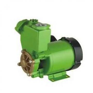 Kawasaki K5V80DTP-1JLR-9N61 K5V Series Pistion Pump