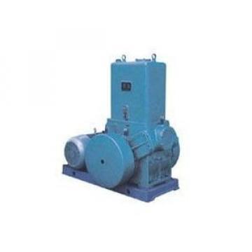 Yuken PV11R10-5-L-RAA-20 Piston Pump PV11 Series