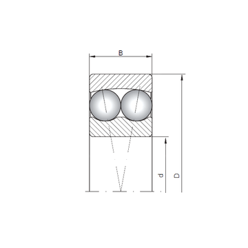 1409 ISO Self Aligning Ball Bearings